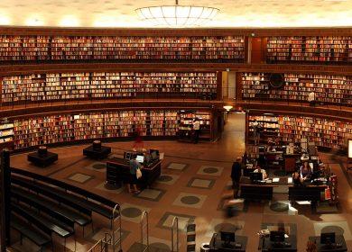 Il dilemma dei neodiplomati: quale università scelgo?