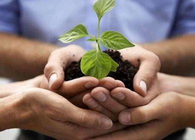 Comunicare la sostenibilità attraverso l'ambiente